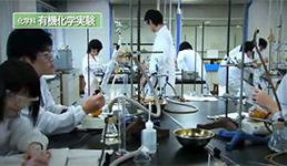理学部の動画