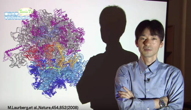 化学科 井川 善也 教授
